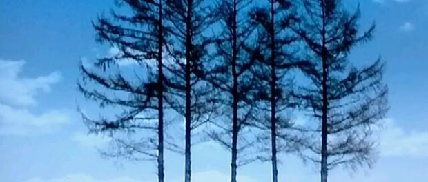 """ジャニーズ""""嵐ファン"""":北海道CMロケ地で「不法侵入!」「盗難騒ぎ!」「ポイ捨て!」…マナー違反が深刻化"""