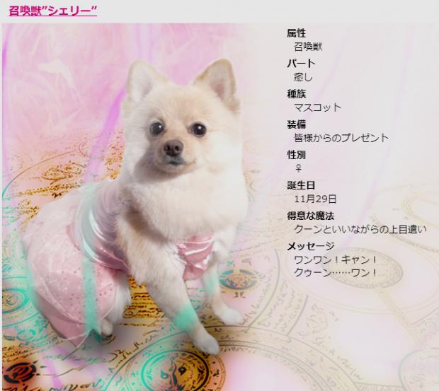 wpid-bjmz.jp-profile-1.png