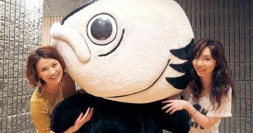 島崎和歌子が4年ぶり歌声披露、カツオ人間作詞・岡本真夜作曲の高知県PRソング唄う。