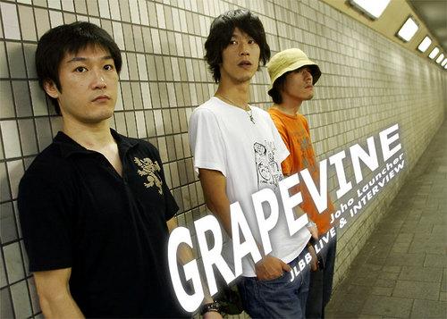 GRAPEVINEp
