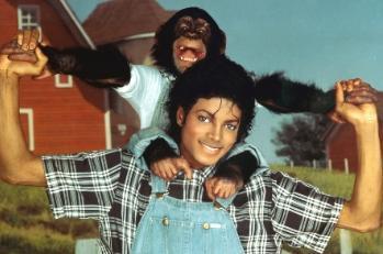 故マイケル・ジャクソンさん、チンパンジーのバブルス君を殴る蹴る