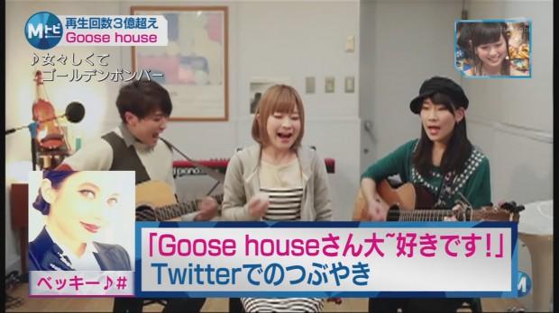 mst-goosehouse-0005