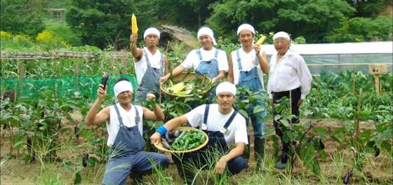 【朗報】DASH村を再生へ