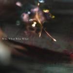 凛として時雨の新曲「Who What Who What」が2015年1月9日公開の映画『劇場版 PSYCHO-PASS サイコパス』の主題歌に決定!!!11月27日の「ノイタミナプロジェクト発表会2015」にて音源の一部解禁