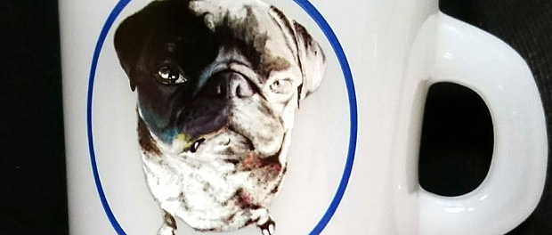 嵐の大野智が個展でグッズ化したパグが彼女の飼い犬だと気づいたアラシック阿鼻叫喚wwwwww