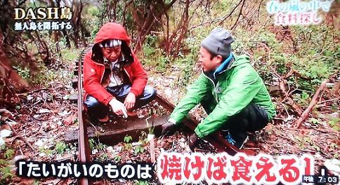 TOKIOってDASH島を最終的にどうしたいの?