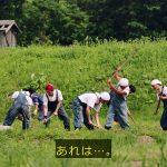 ドラマ「勇者ヨシヒコと導かれし七人」にDASH村とTOKIOらしき人たちが出てきたんだがwwwwwwwwwww