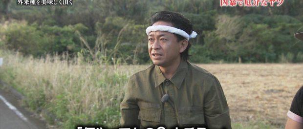 TOKIO、自然薯とイグアナを食っただけで高視聴率を獲得wwwww 鉄腕DASH