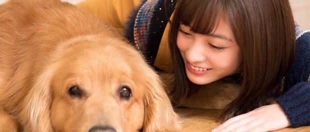 犬エルボーで有名な橋本環奈さん、実は犬が大好きだった