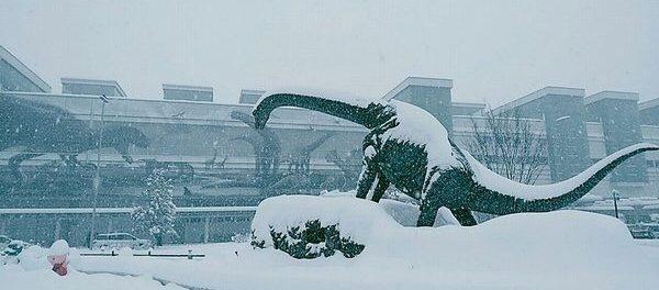 【悲報】福井在住のAKBメンバー、大雪で身動きが取れなくなってしまう