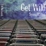 TM NETWORK、全曲「GET WILD」アルバムがギネス認定wwwwwwwww