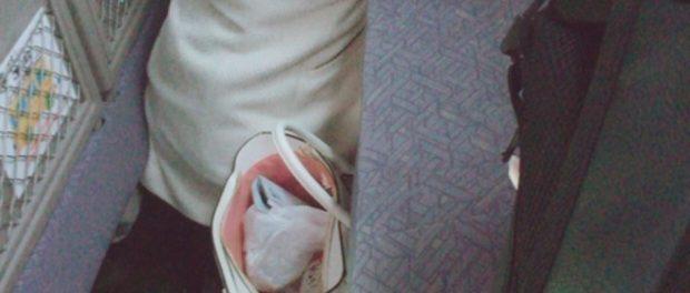 中井りか、新幹線で寝顔を盗撮され激怒wwwww