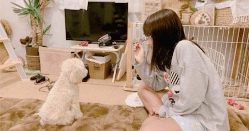 辻希美さん、愛娘と愛犬との和やかな一枚を投稿 → 「床に沢山敷いて不潔」「部屋が汚い」とまさかの非難殺到wwww