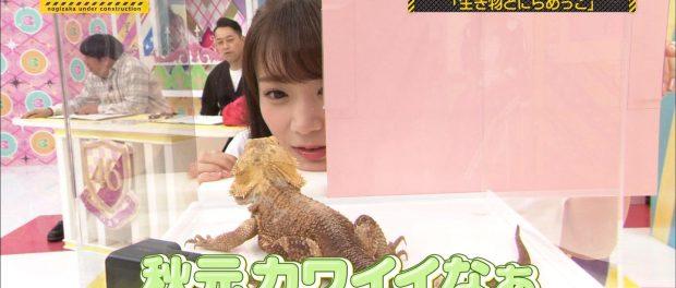 【悲報】日村勇紀さん、秋元真夏を見て「秋元カワイイなぁ」とつぶやいてしまい微妙な空気に・・・
