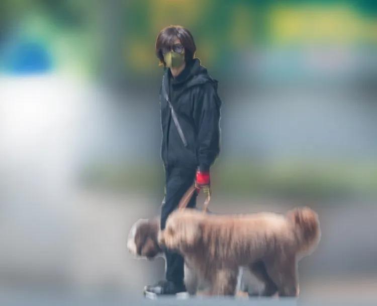 稲葉浩志 犬の散歩