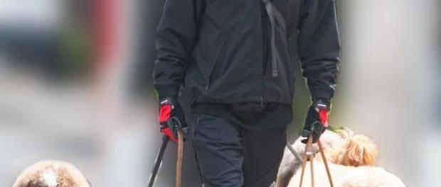 【悲報】B'zの稲葉浩志さん、また犬の散歩を盗撮される